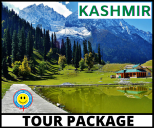 Best Tours and Travel Services in India